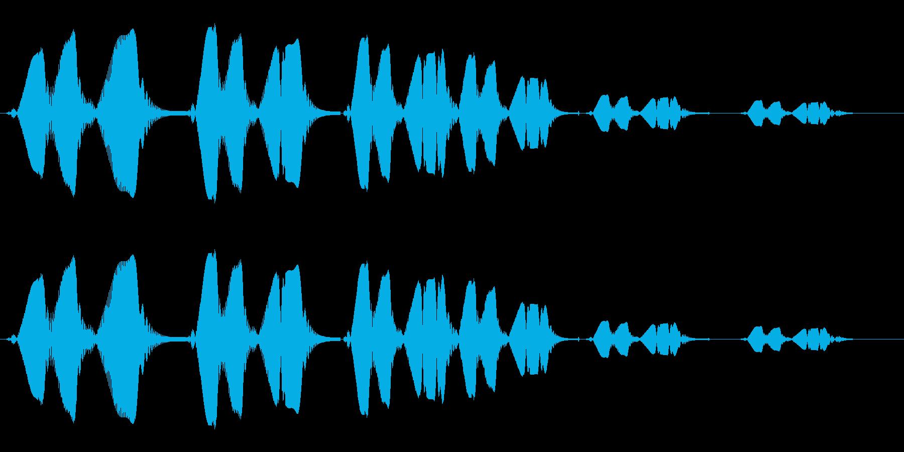 プワップワン(泡の音色)の再生済みの波形