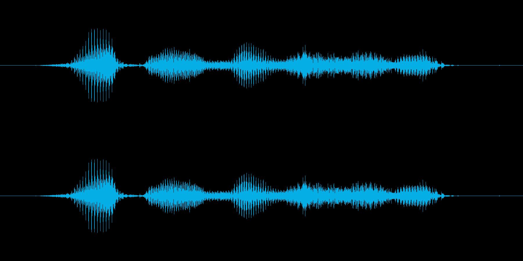 【干支】ヘビ年の再生済みの波形