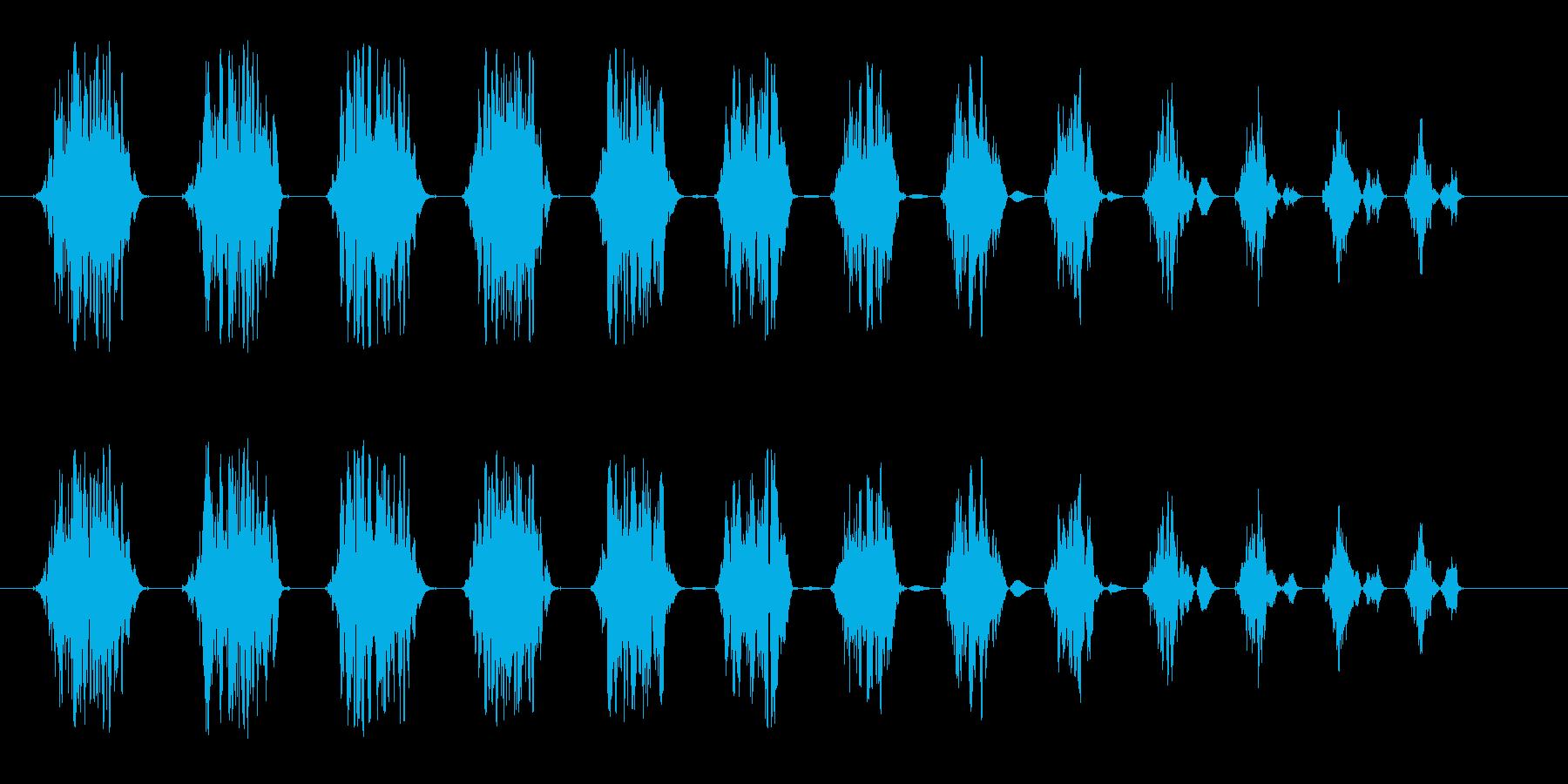 シュワンシュワン(回転する音)の再生済みの波形