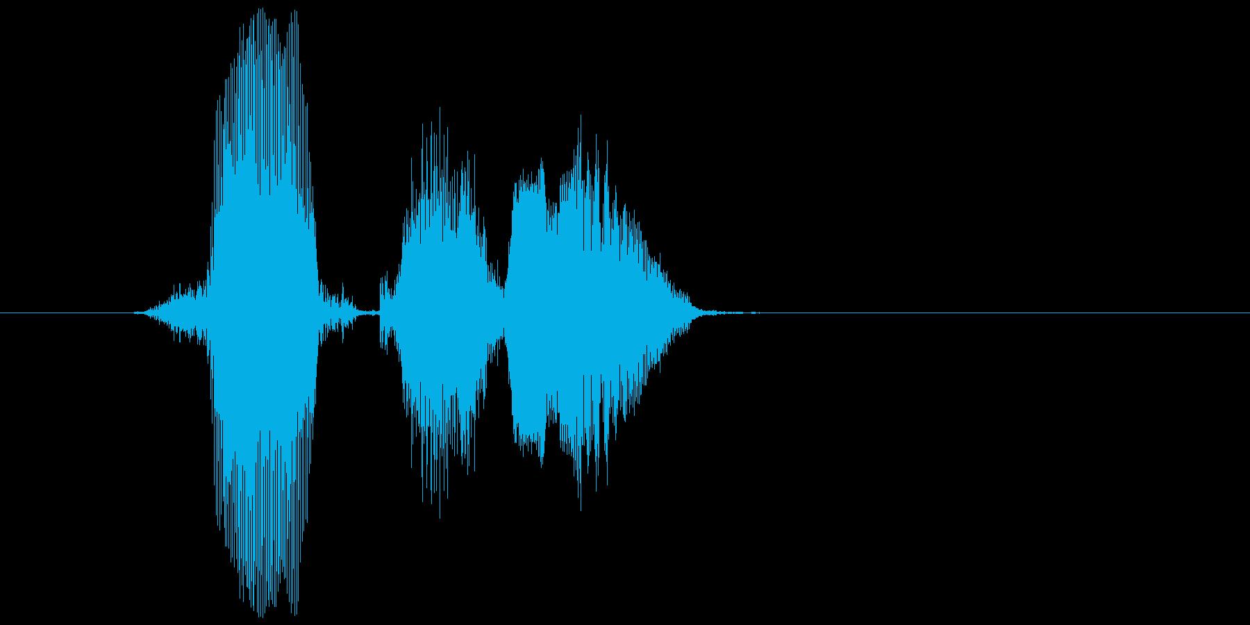 「はくしょん」の再生済みの波形