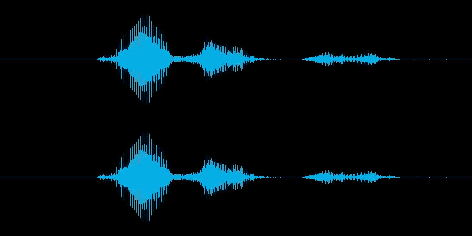 【月】5月の再生済みの波形