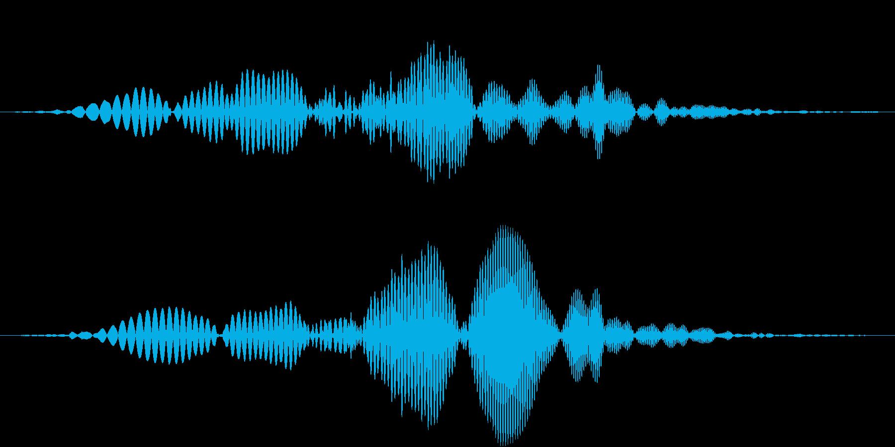 AnimeFX ポヨンとマヌケなSEの再生済みの波形