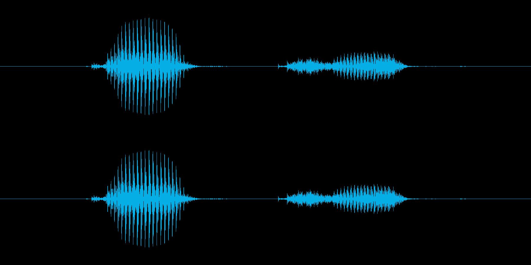 【干支】辰の再生済みの波形