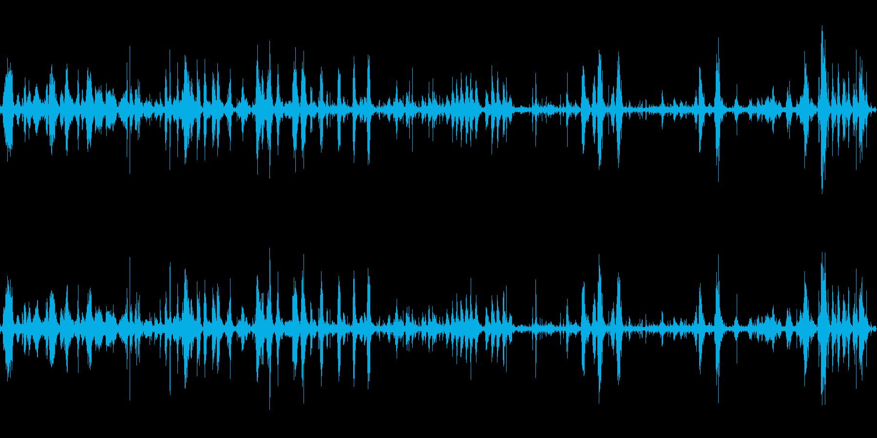 カモの群れの再生済みの波形