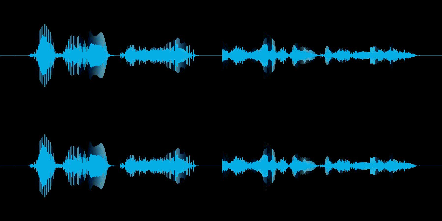【時報・時間】午後6時を、お知らせいた…の再生済みの波形