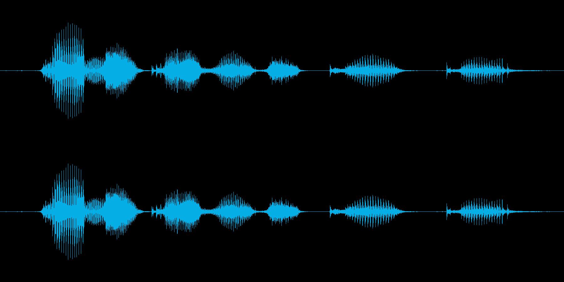 【日数・経過】7ヶ月経過の再生済みの波形