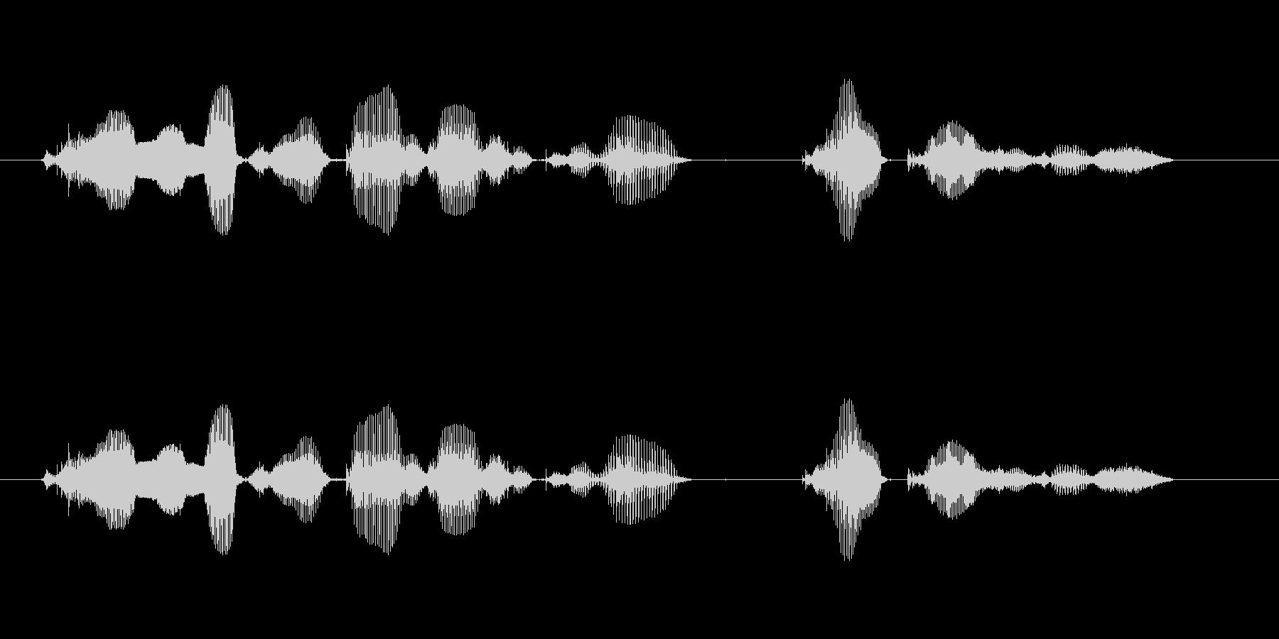 【誕生石】12月の誕生石は、ターコイズ…の未再生の波形