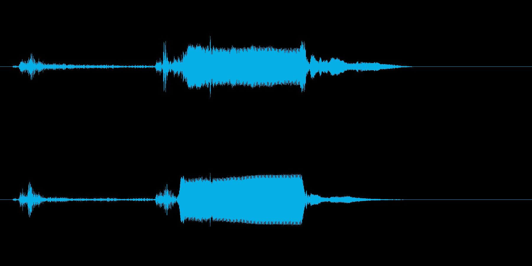 ピピッ!(シンプルなスイッチ音)の再生済みの波形