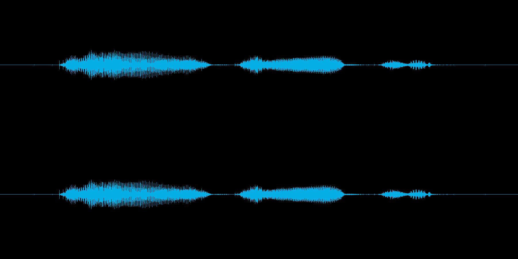 【日】11日の再生済みの波形