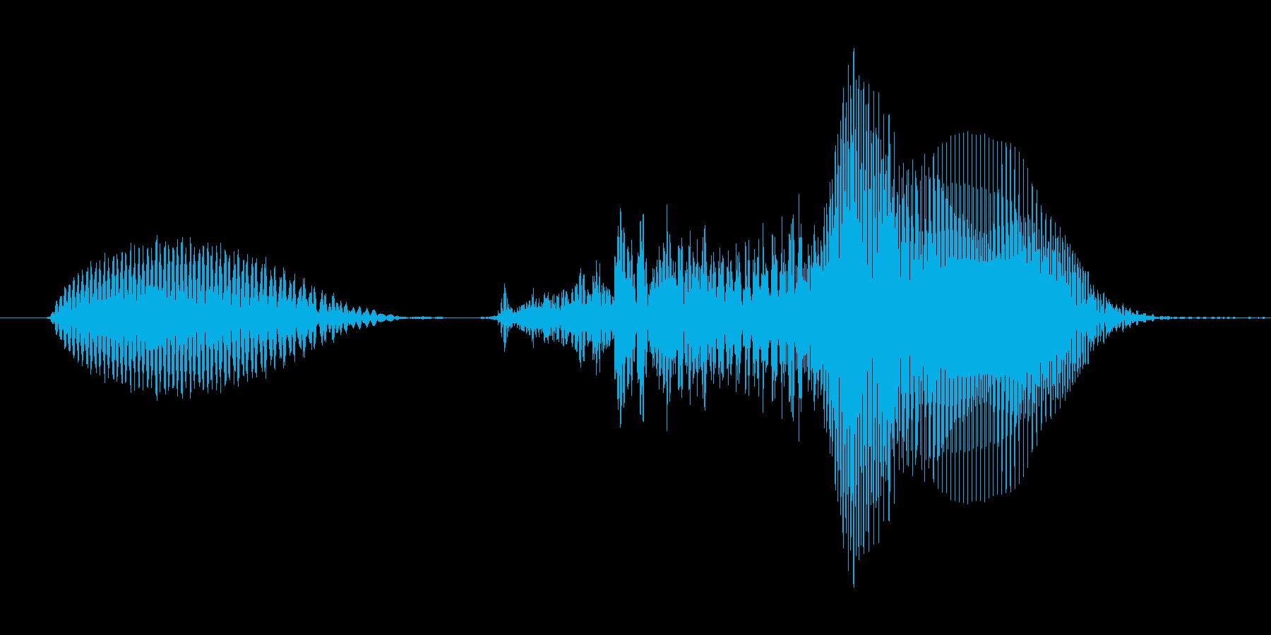 いくぞっ!(Type-D)の再生済みの波形