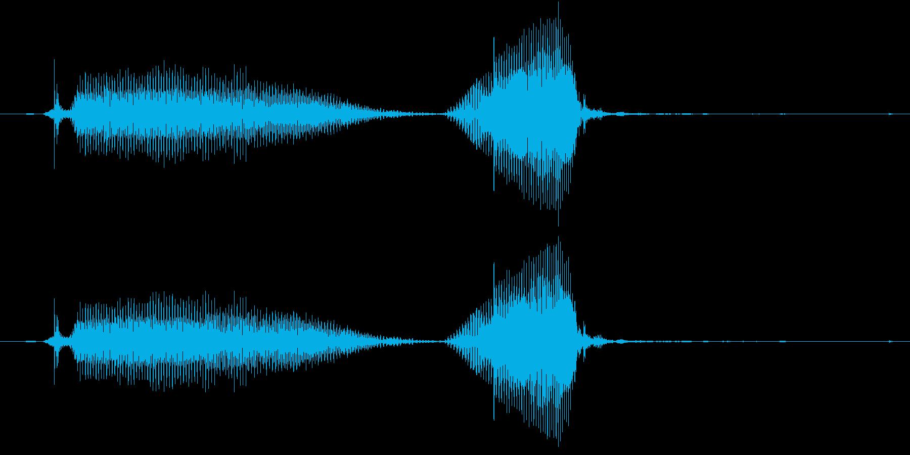 だーめ(2歳児の生声です)の再生済みの波形