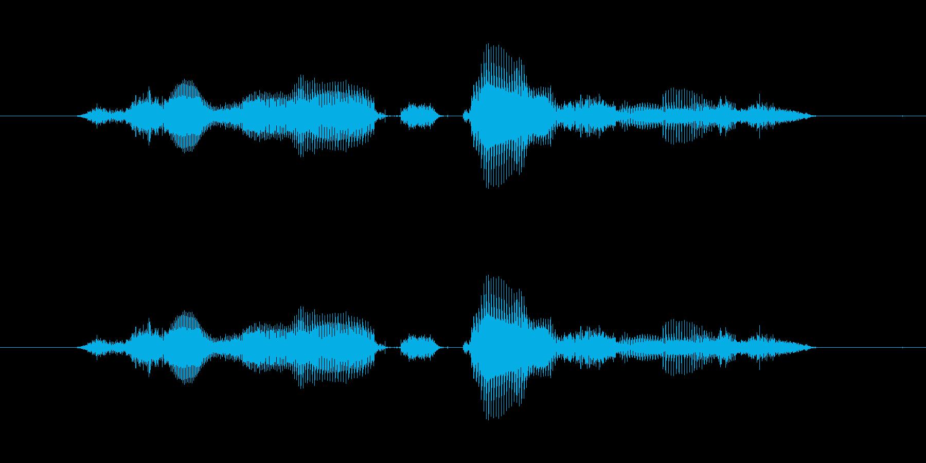 【時報・時間】7時をお伝えしますの再生済みの波形