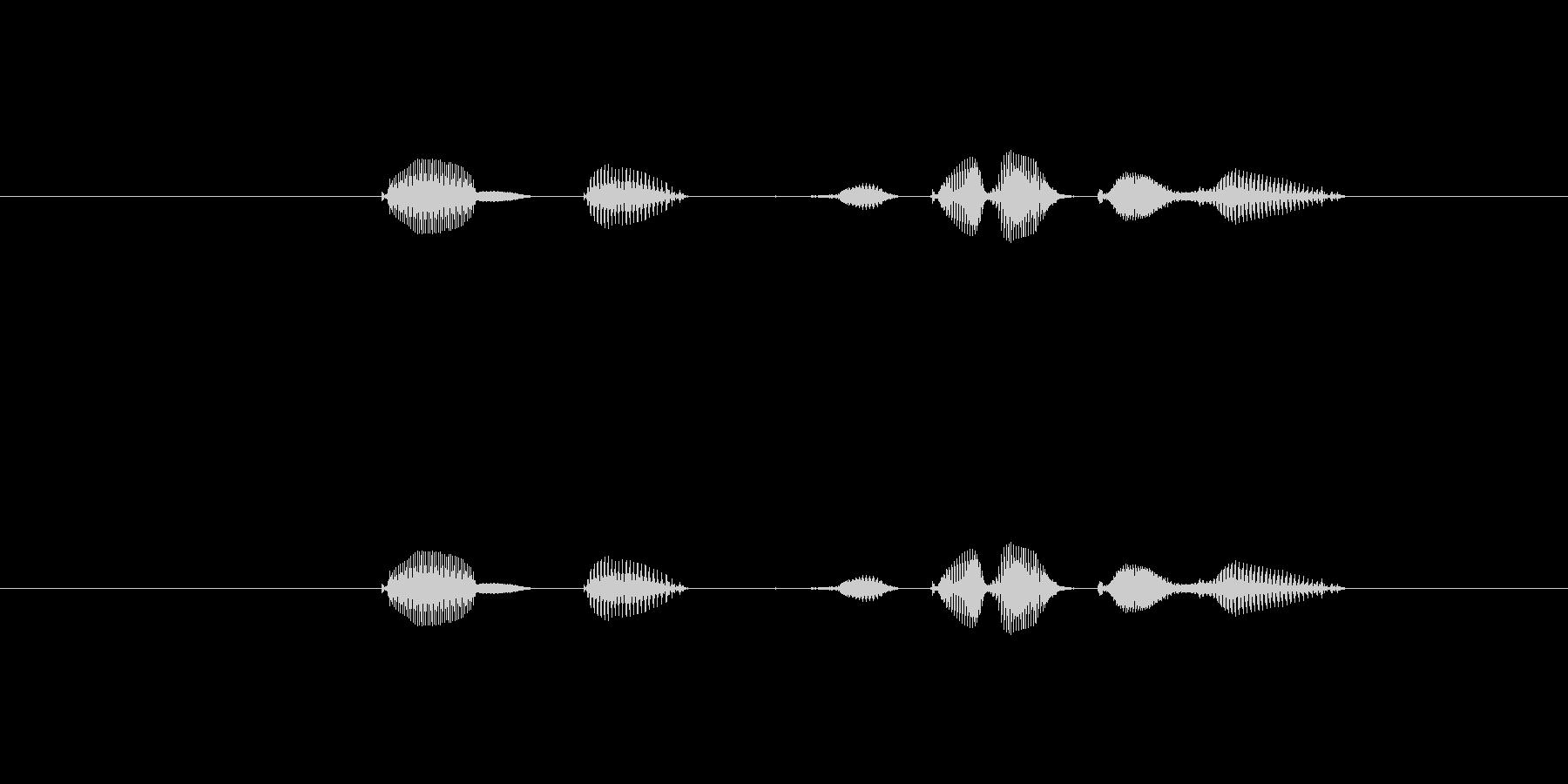 テンポ、160の未再生の波形