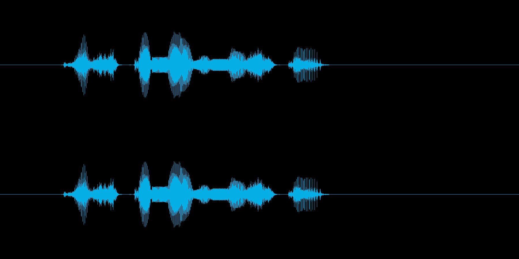 【システム・了承】「かしこまりました」の再生済みの波形