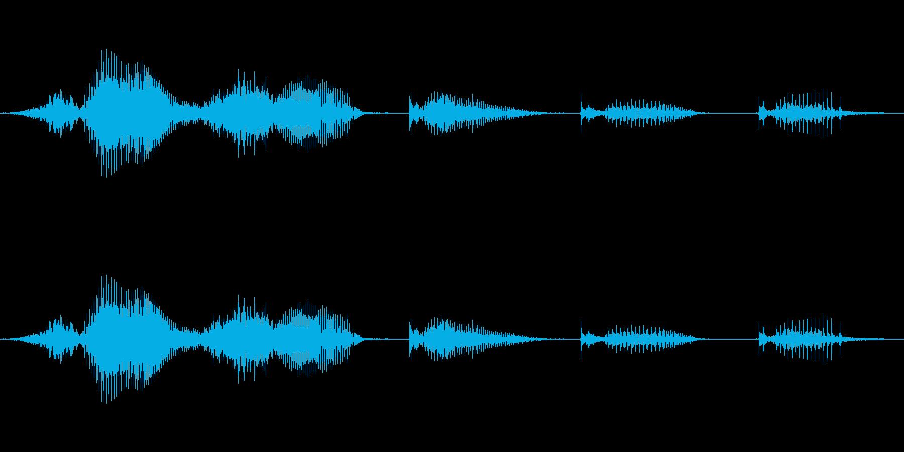 【日数・経過】3週間経過の再生済みの波形