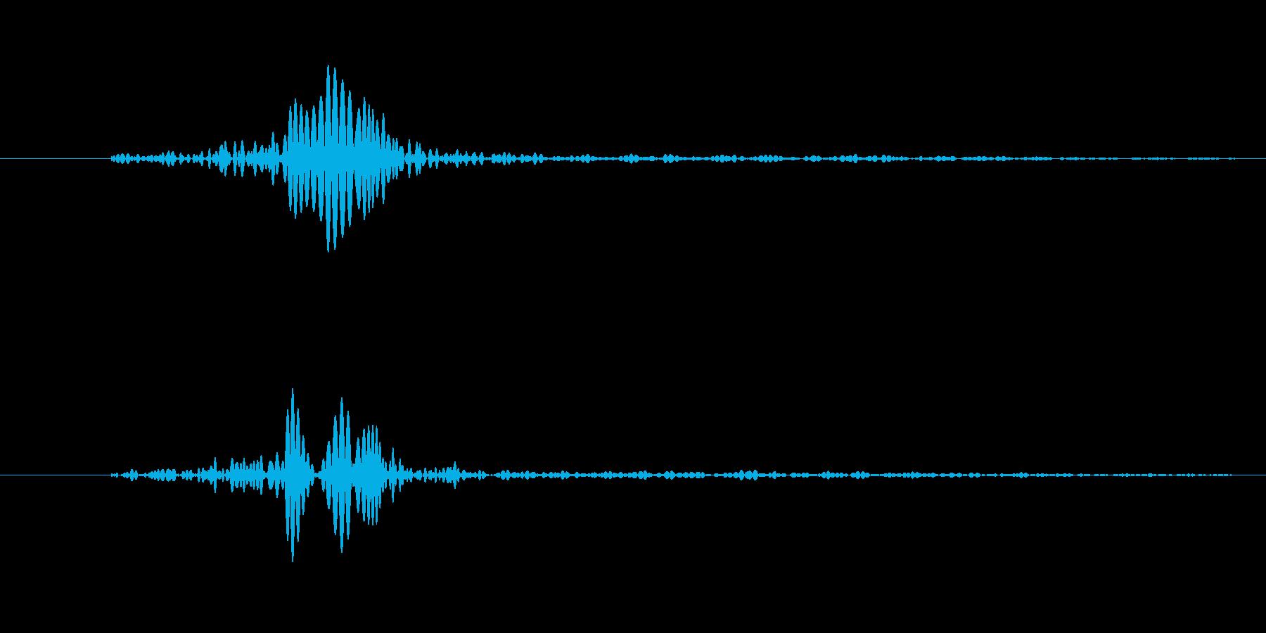 ぽよ、ぼよに近い音。残響大きめ。の再生済みの波形