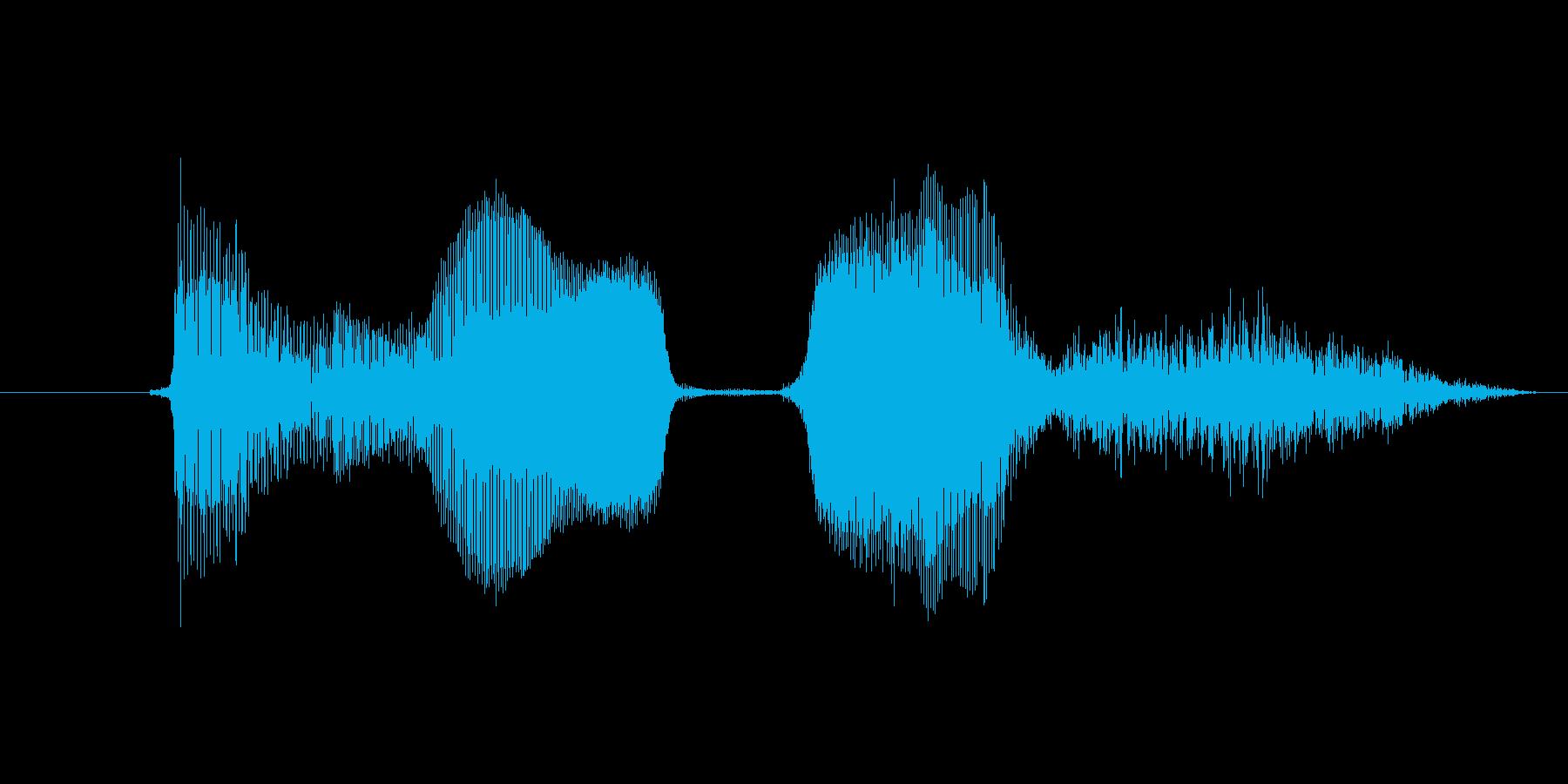 ボーナスの再生済みの波形