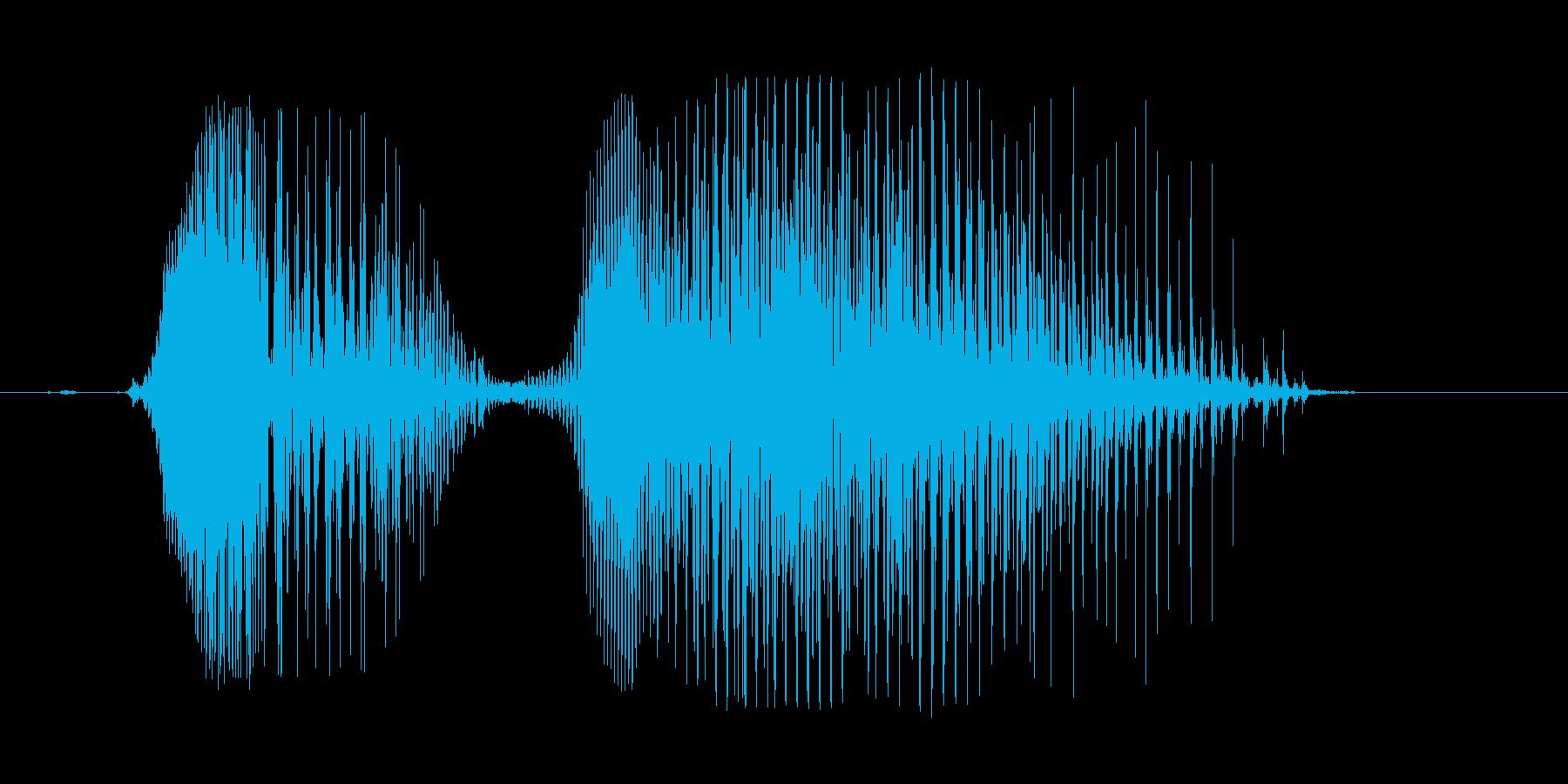 うぼぁ!の再生済みの波形