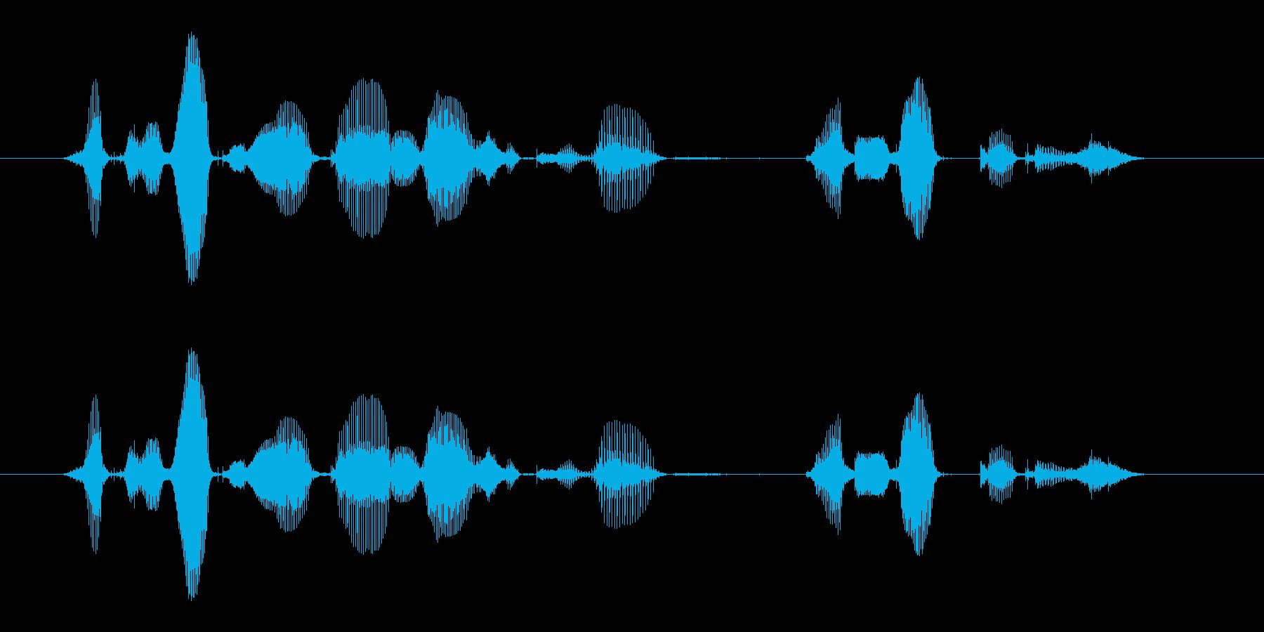 【誕生石】8月の誕生石は、ペリドットですの再生済みの波形