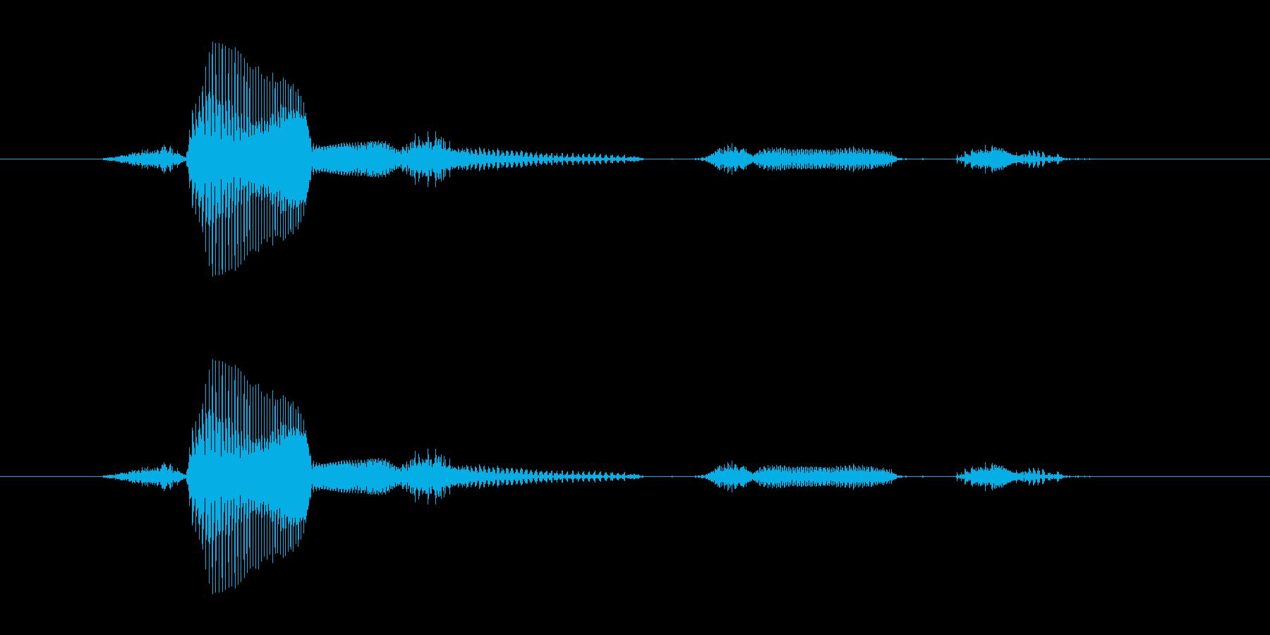 【日】31日の再生済みの波形