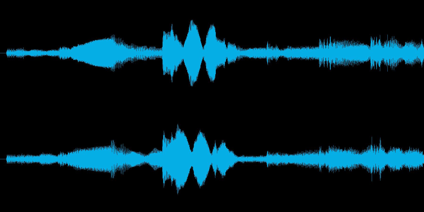 ピポパポ音の再生済みの波形