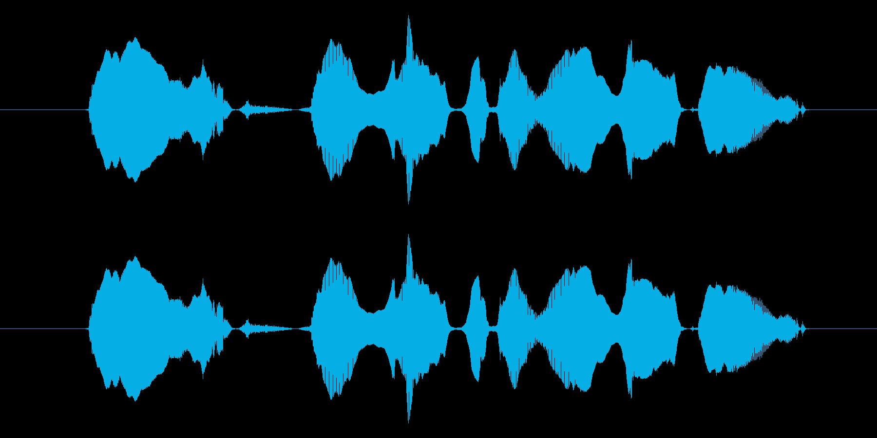 【親子】「わーい、ハンバーグだハンバー…の再生済みの波形