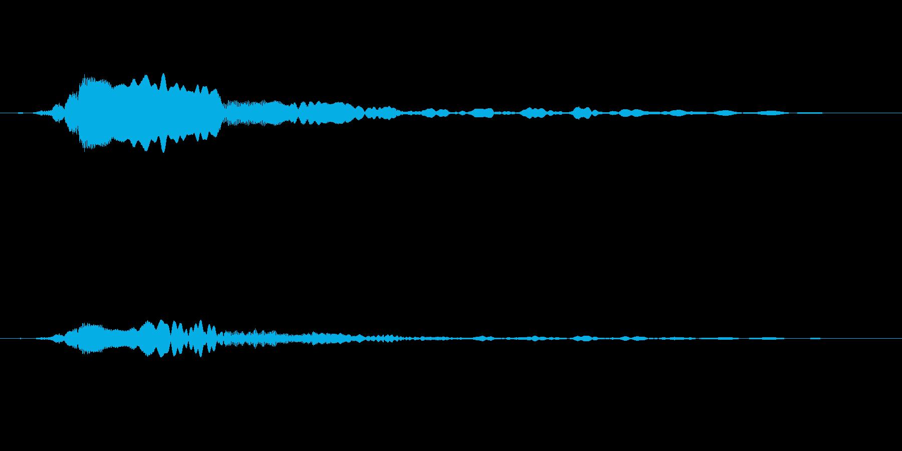 「ピーヒョロロ」鳶、とんびの鳴き声01 の再生済みの波形