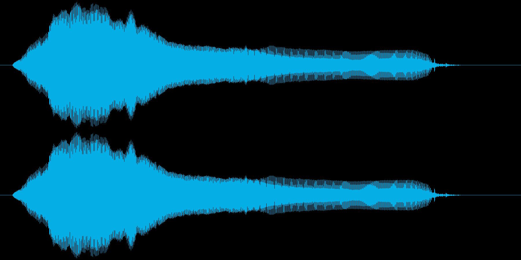 猫の鳴き声(ミャー)の再生済みの波形