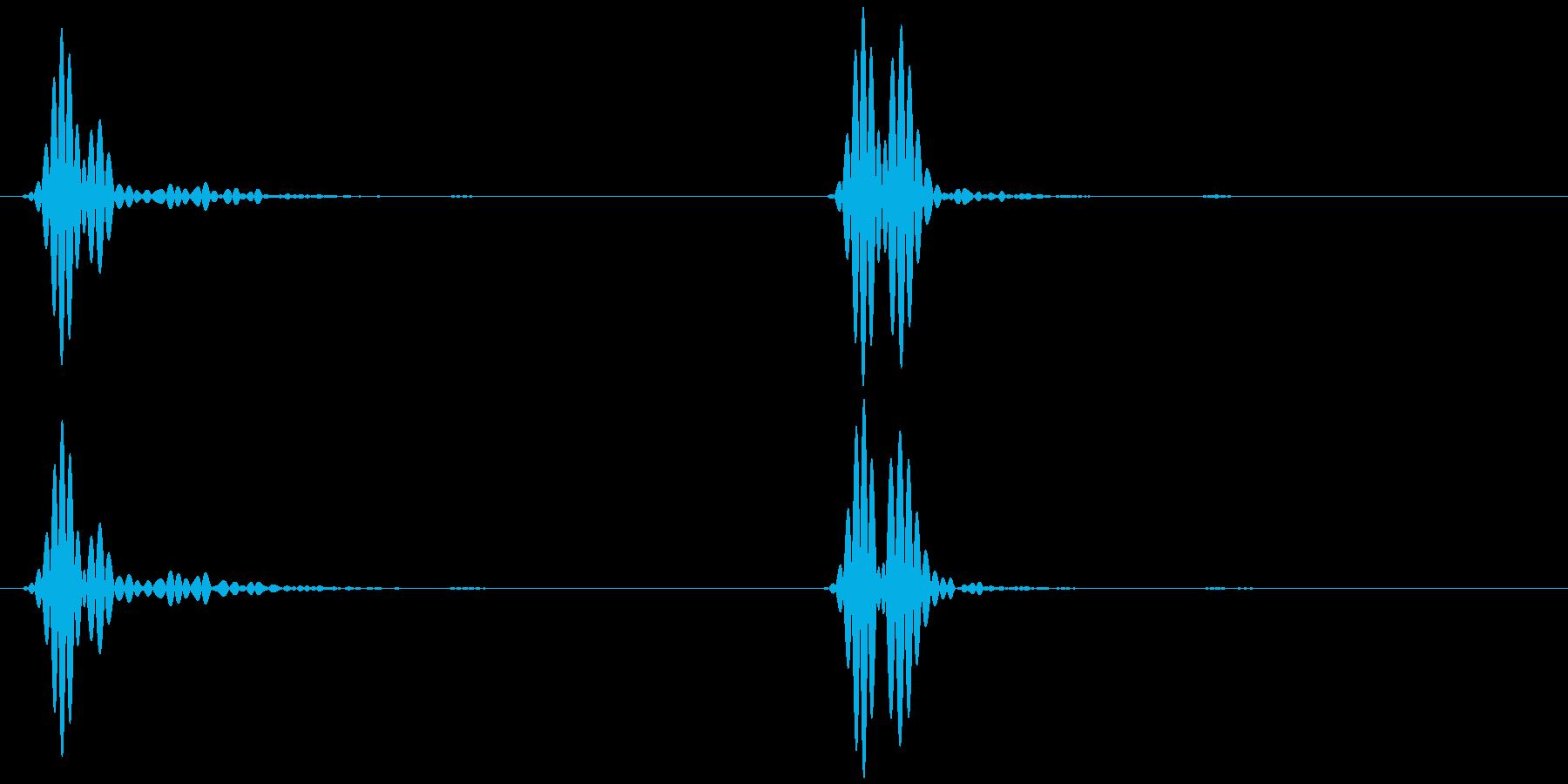 心臓の音 (ドックッ ゆっくり)の再生済みの波形