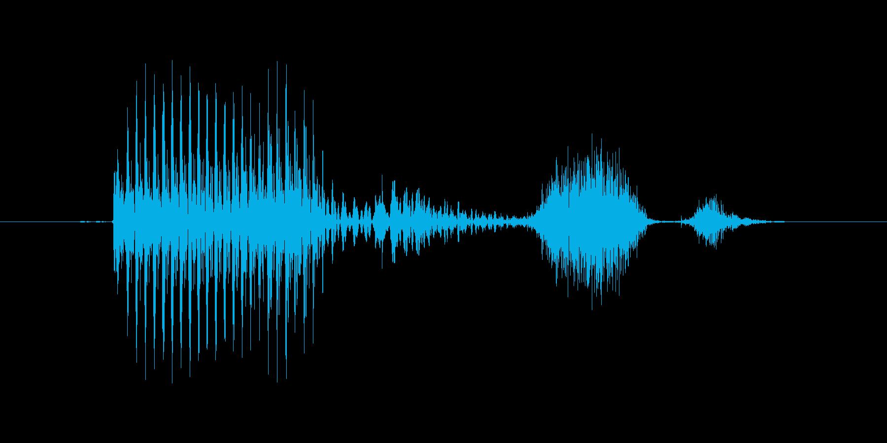 「August」英語発音の再生済みの波形