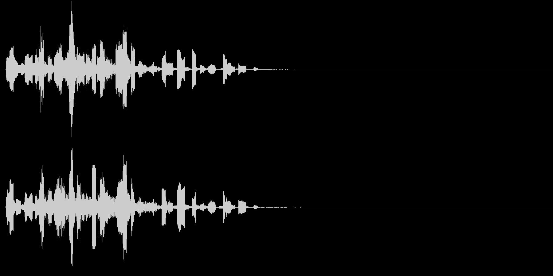 ピロロロリンの未再生の波形