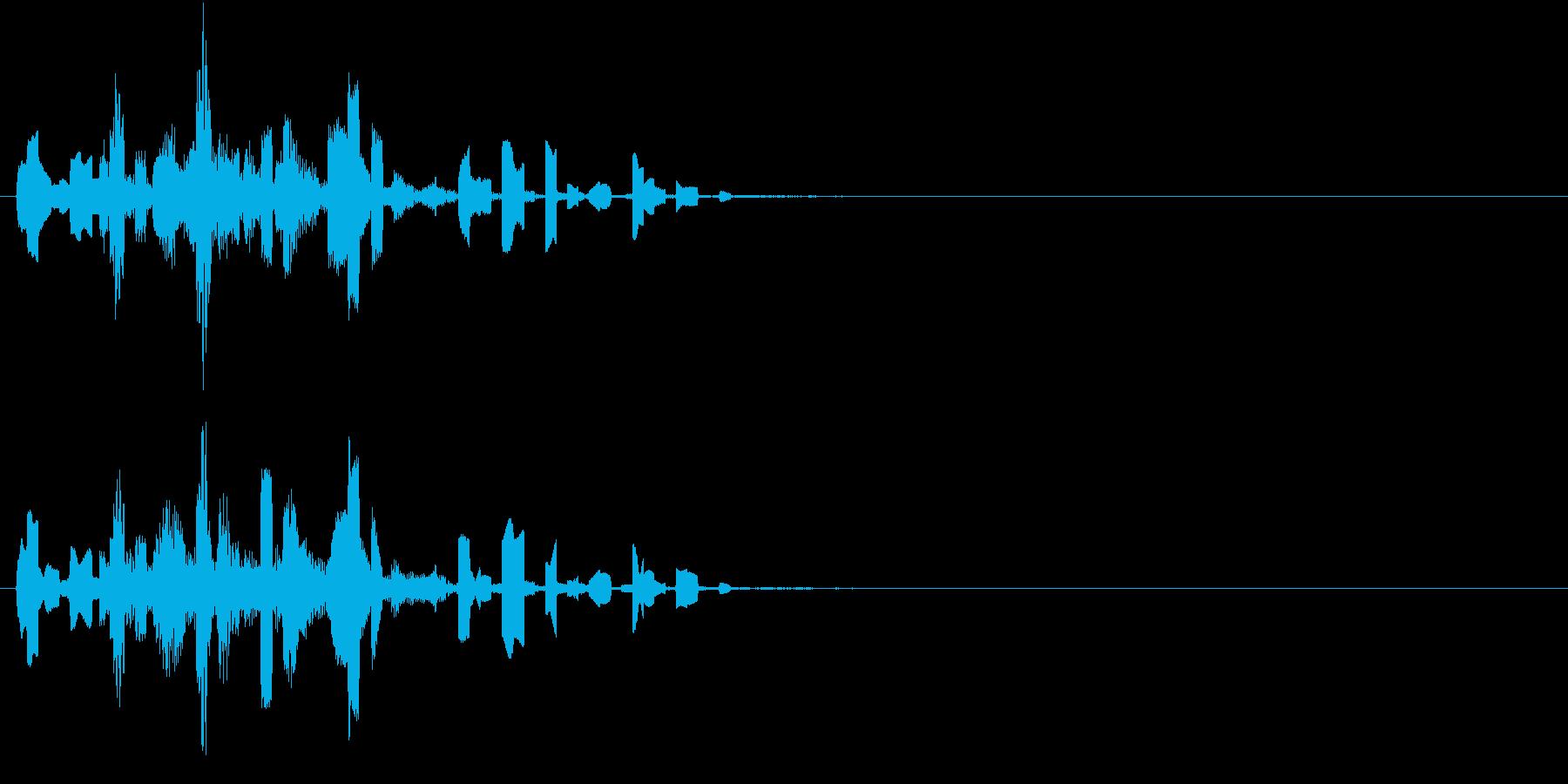 ピロロロリンの再生済みの波形