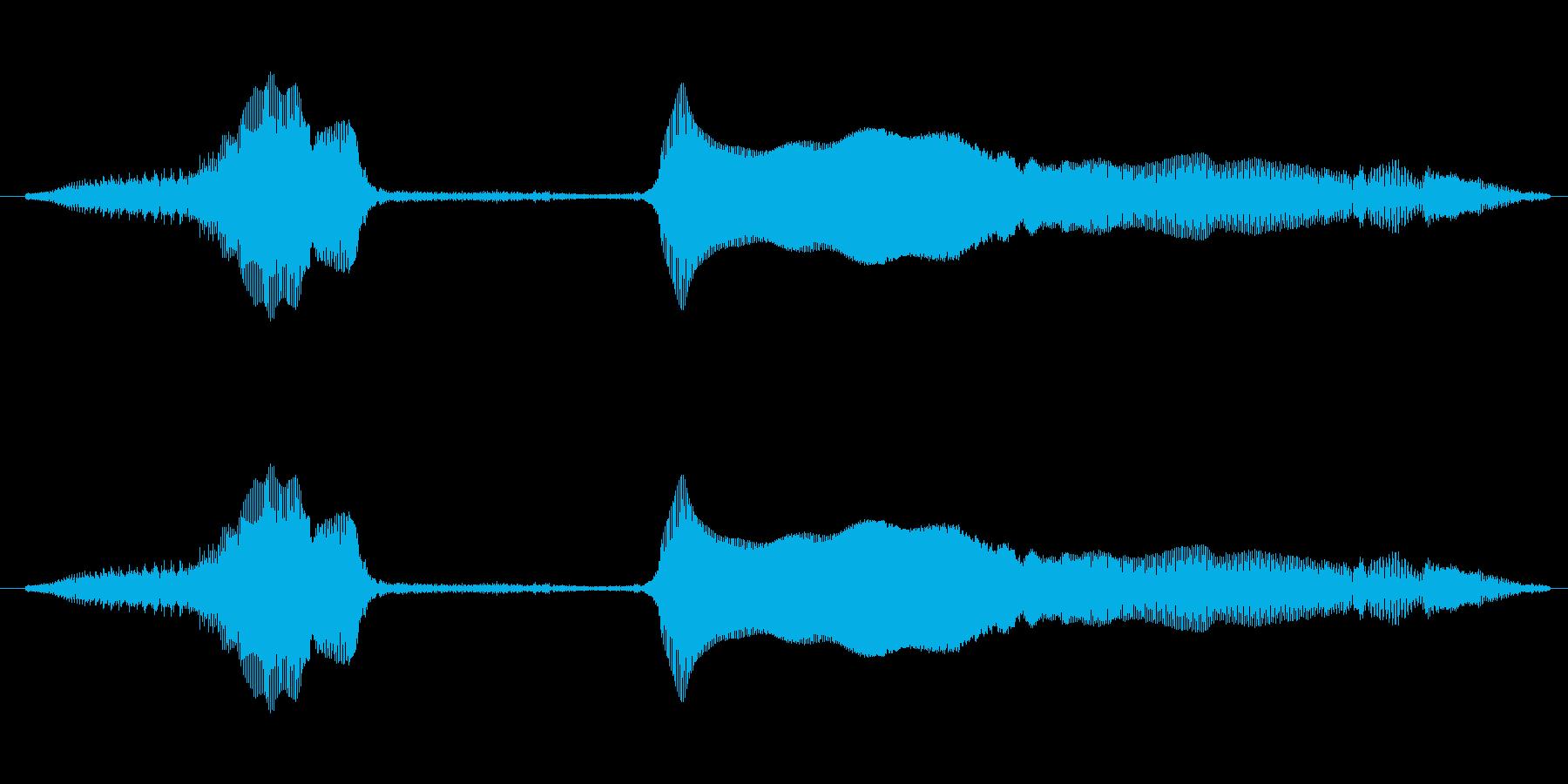 うっそーの再生済みの波形