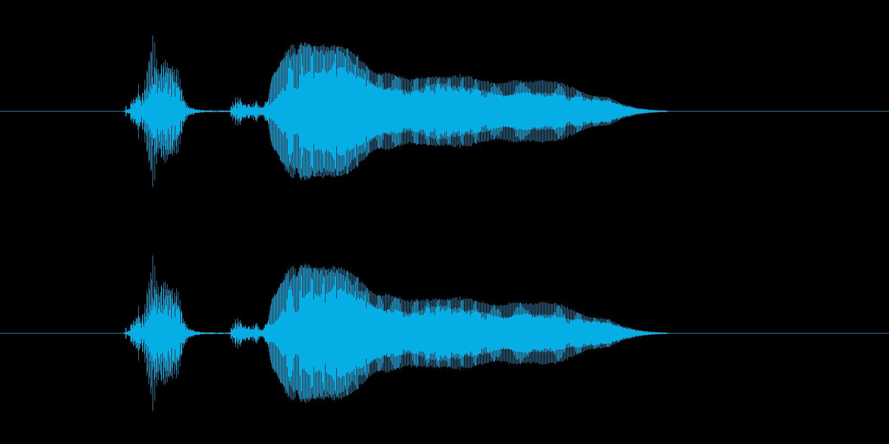 パコーン!の再生済みの波形