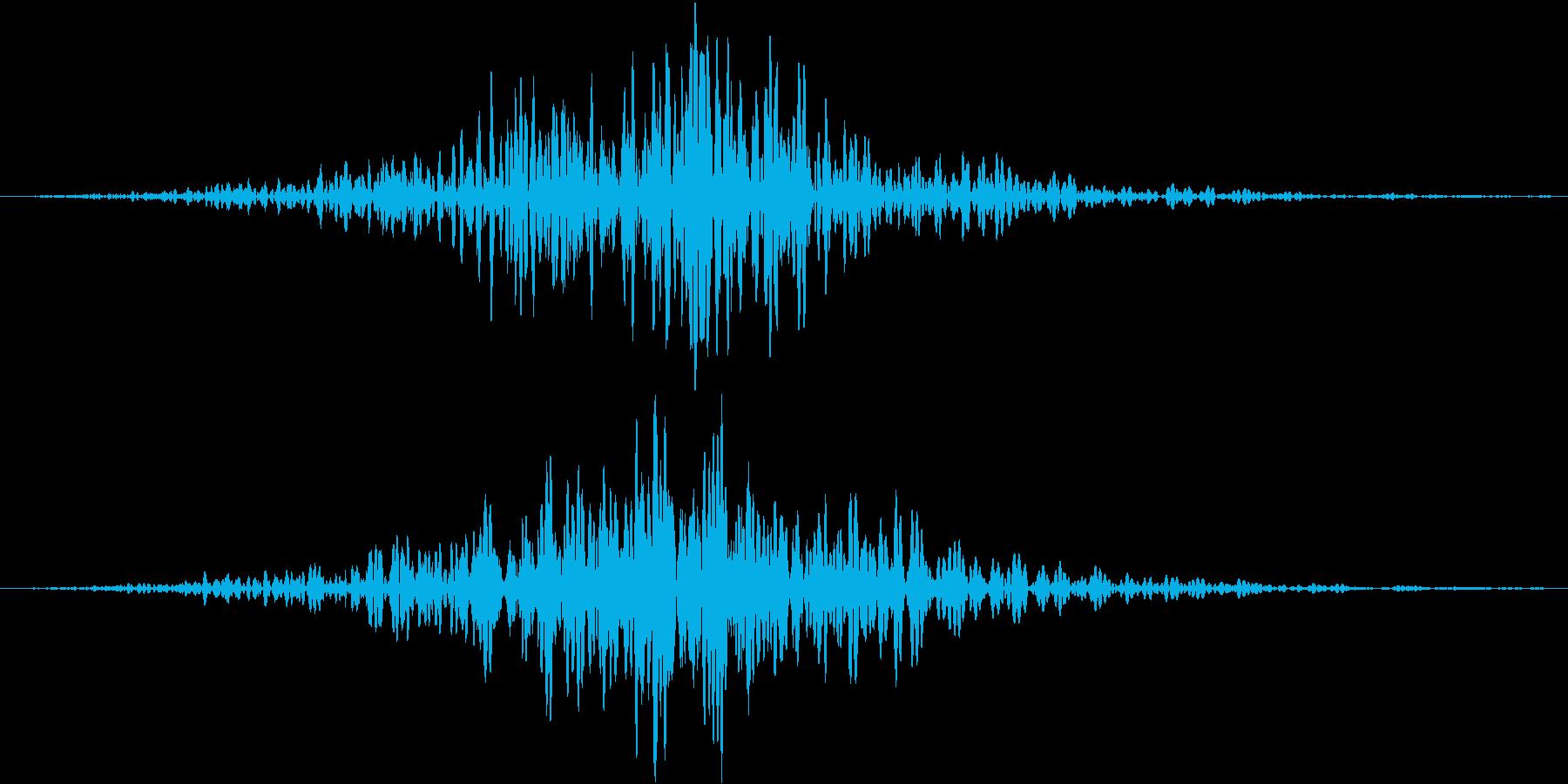 フォンオンオンオン(接近、余韻有り)の再生済みの波形