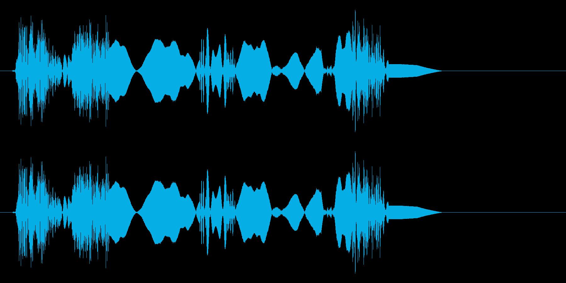 チュクルキュ(摩擦音)の再生済みの波形