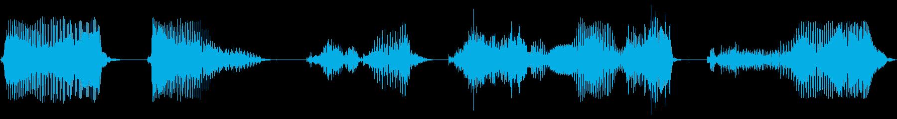 データを記録しますか?の再生済みの波形