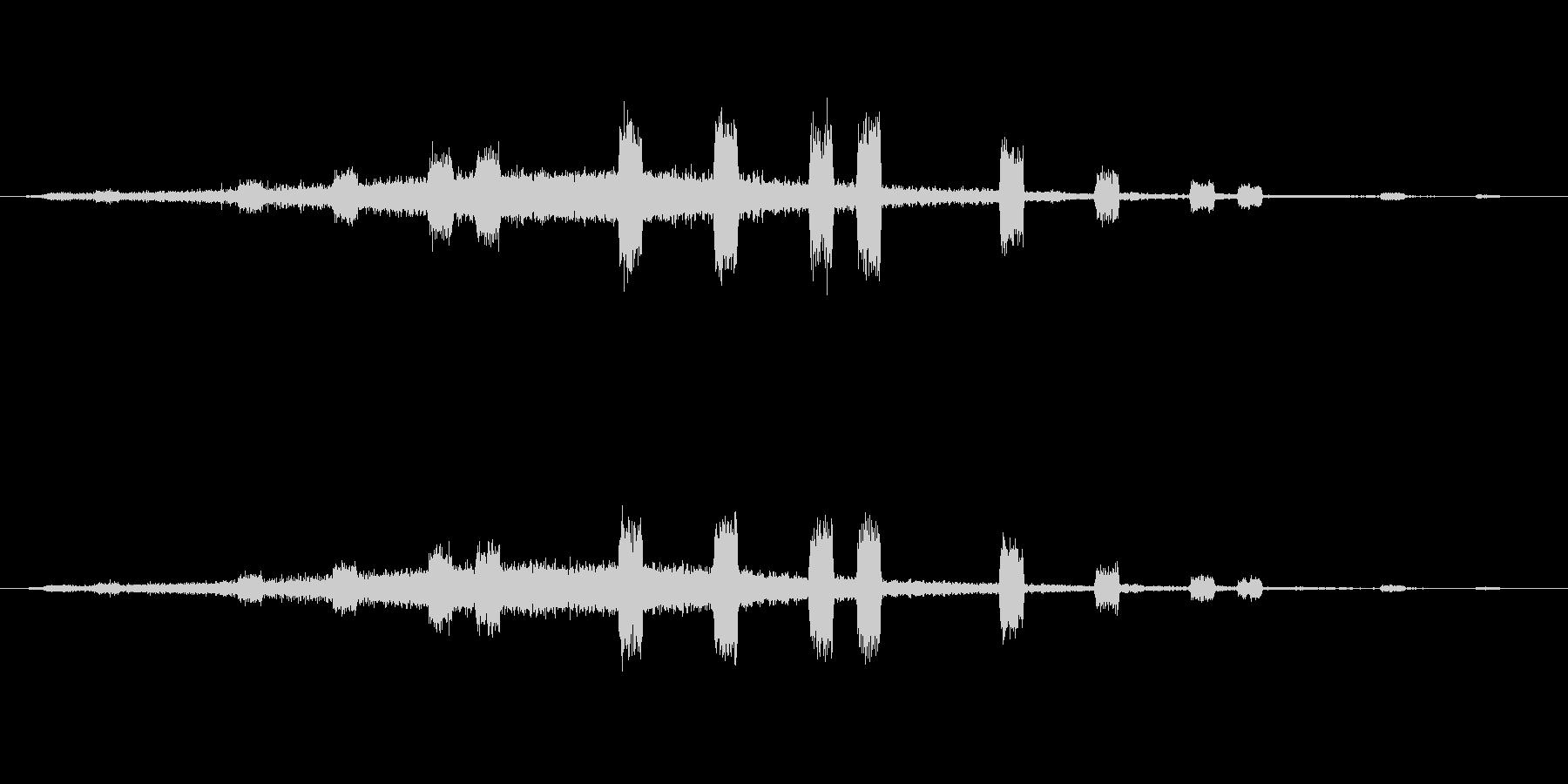 企業のサウンドロゴ(Cool+進歩)の未再生の波形