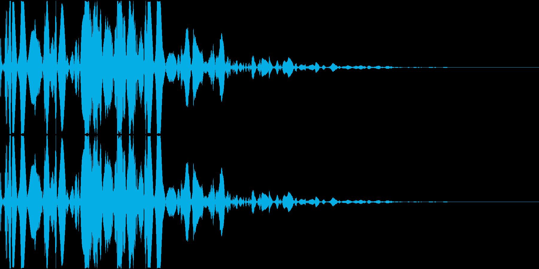 ベチャッ08(泥・液体系のアクション音)の再生済みの波形