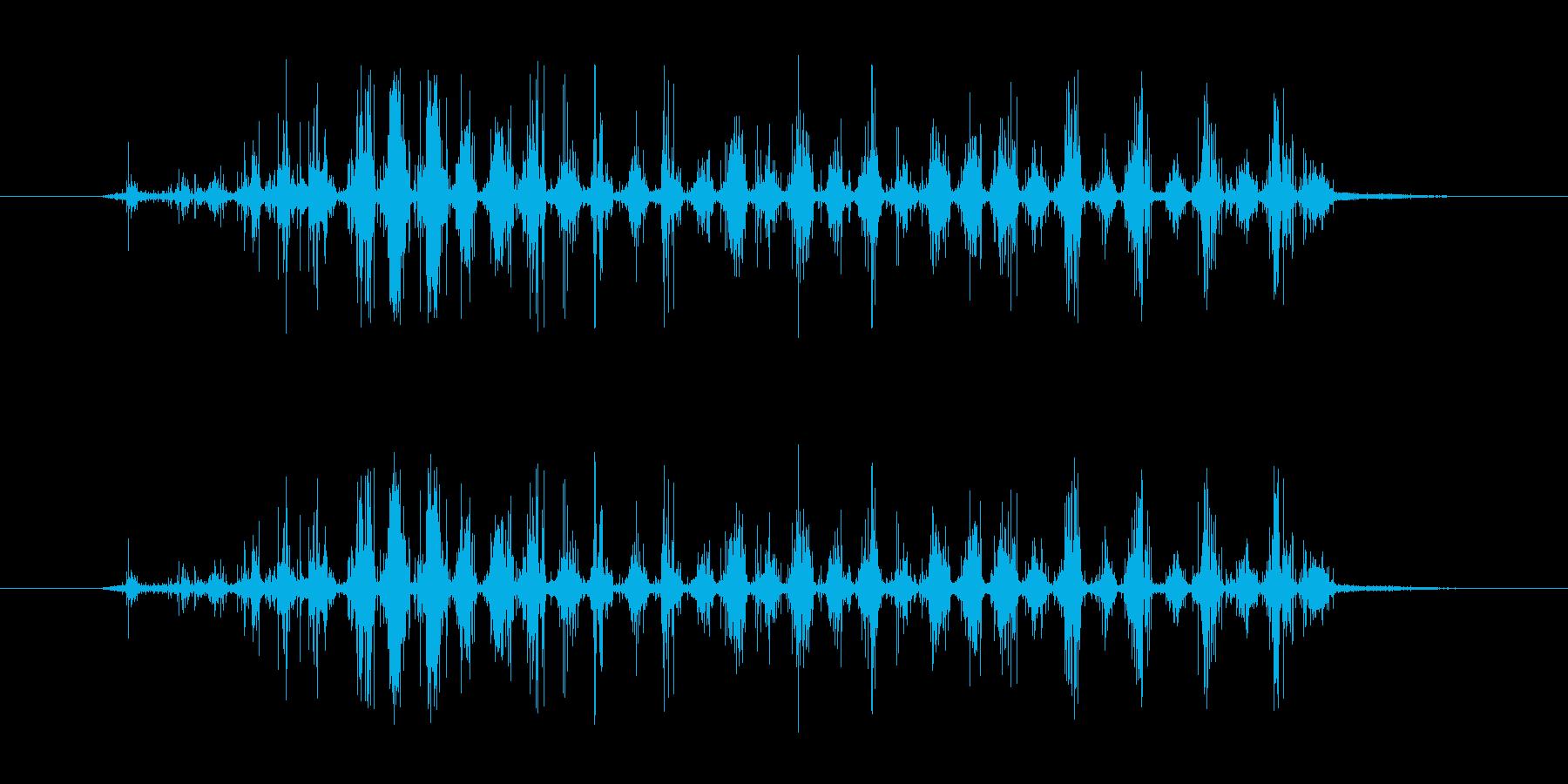 ブラッシング音。の再生済みの波形
