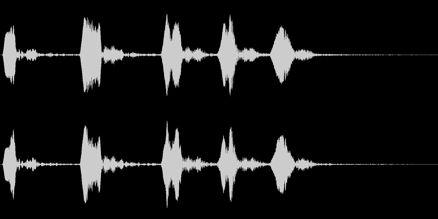 ホトトギスの鳴き声の未再生の波形
