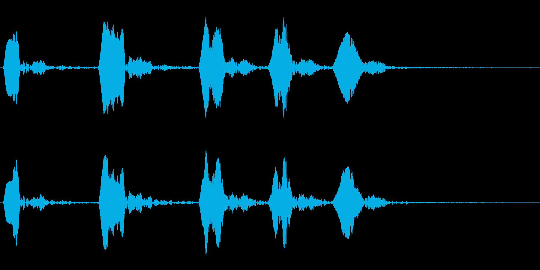 ホトトギスの鳴き声の再生済みの波形