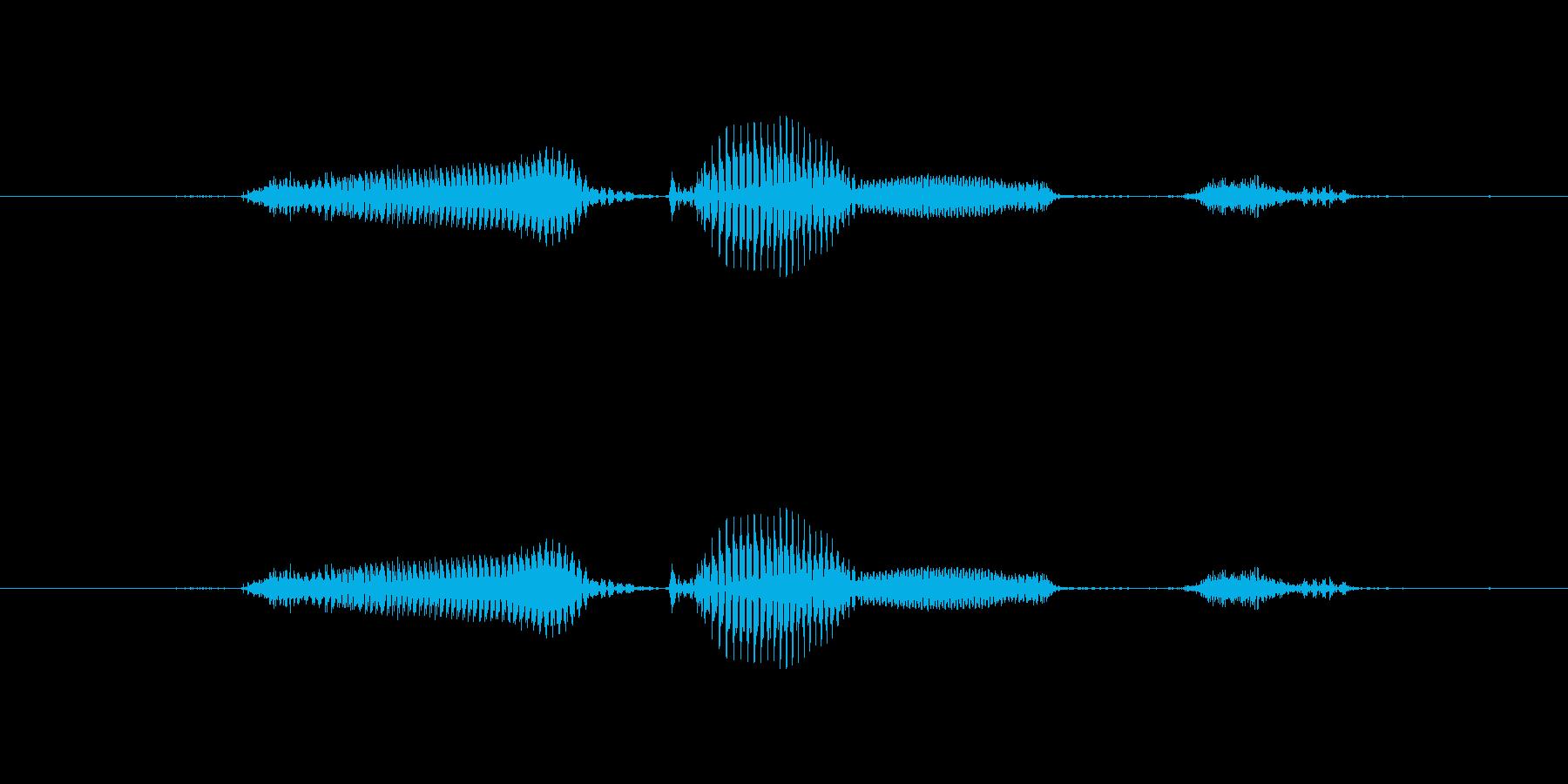 【日】15日の再生済みの波形