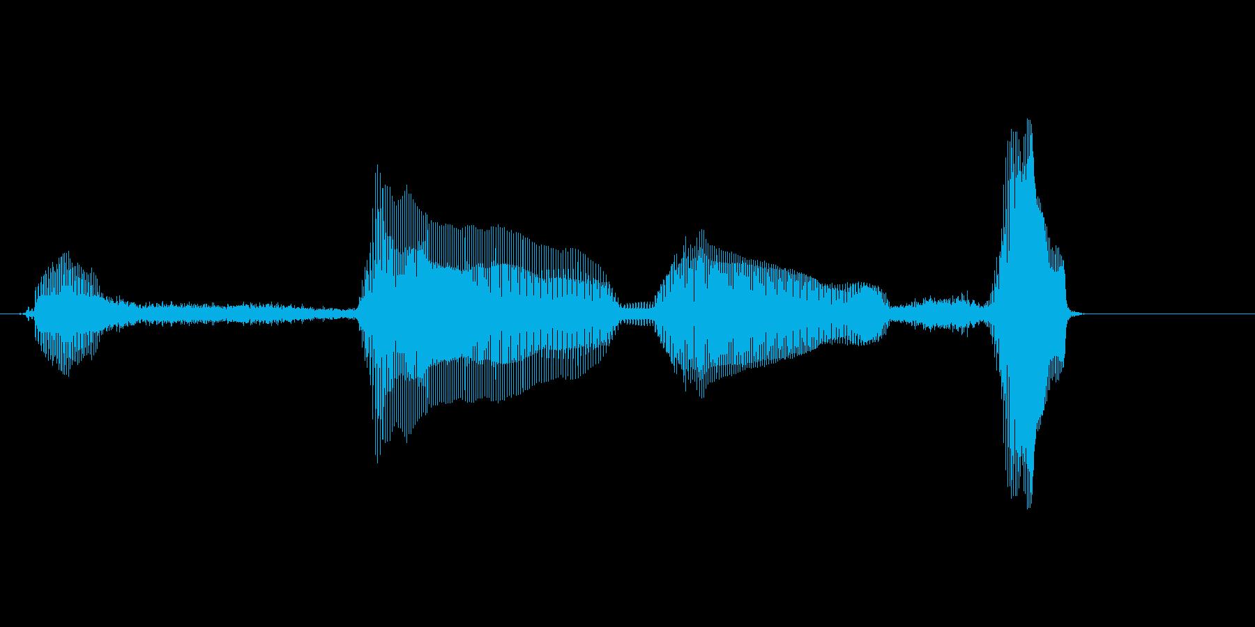 いっせーのーせ の再生済みの波形