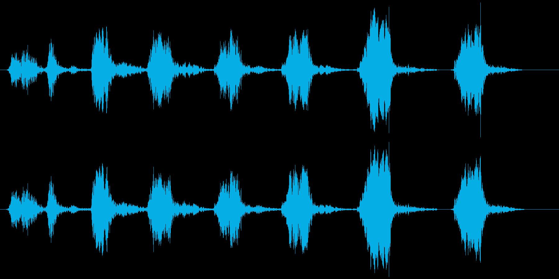 鳥のさえずり (チュ、ヒヒヒヒヒ)の再生済みの波形