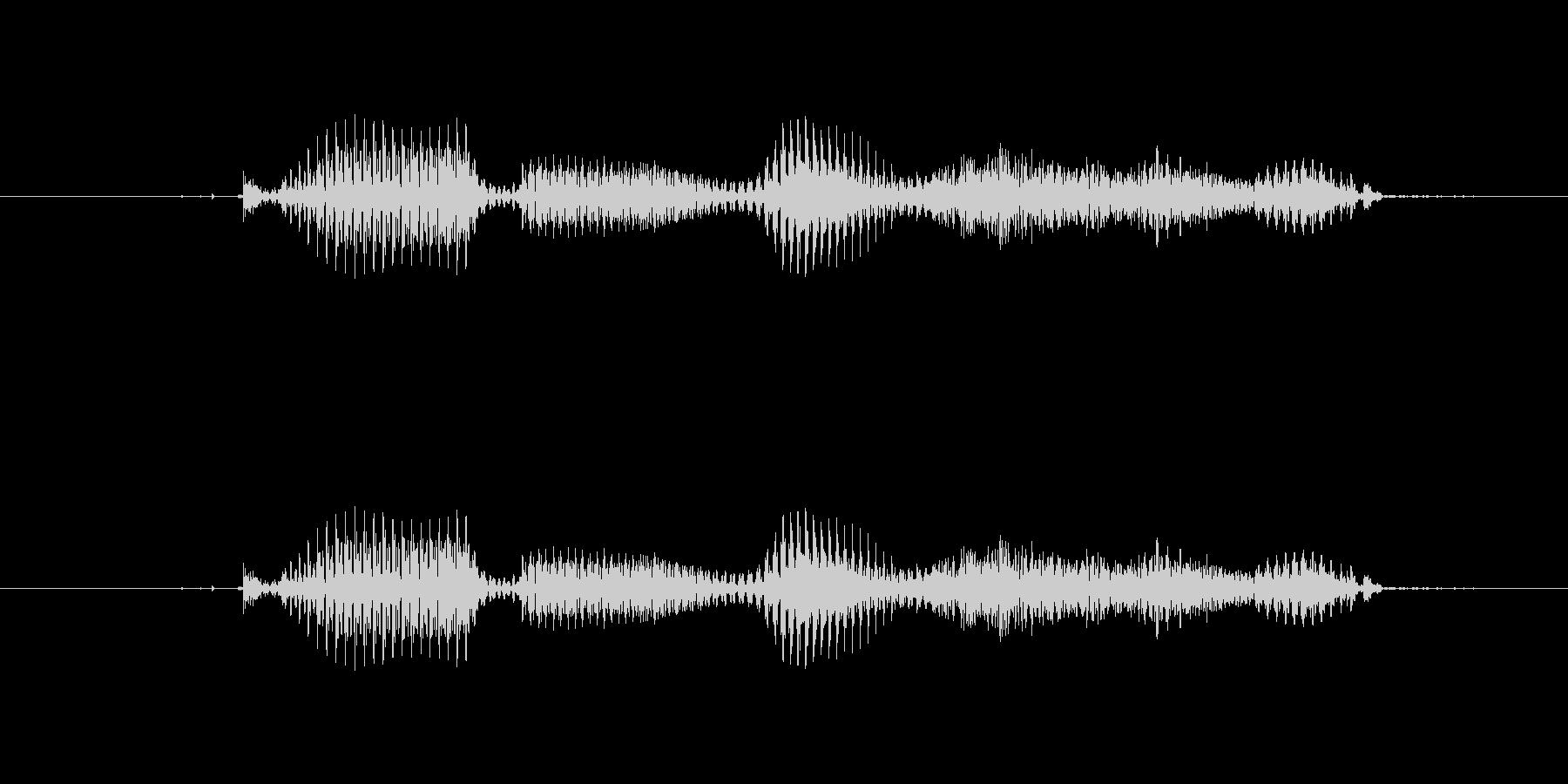 【干支】トリ年の未再生の波形