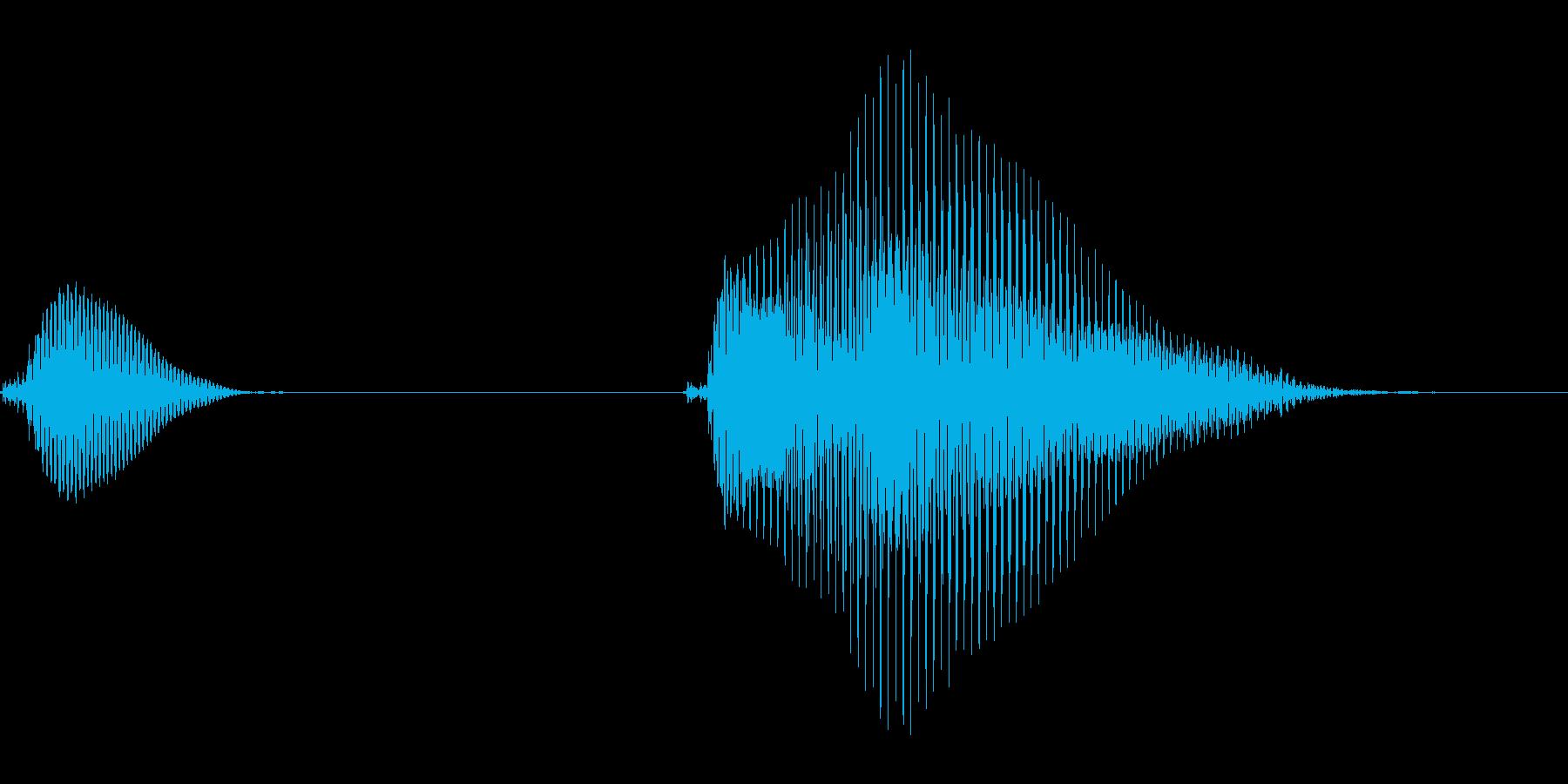 いたっ【子供のダメージボイス、悲鳴】の再生済みの波形