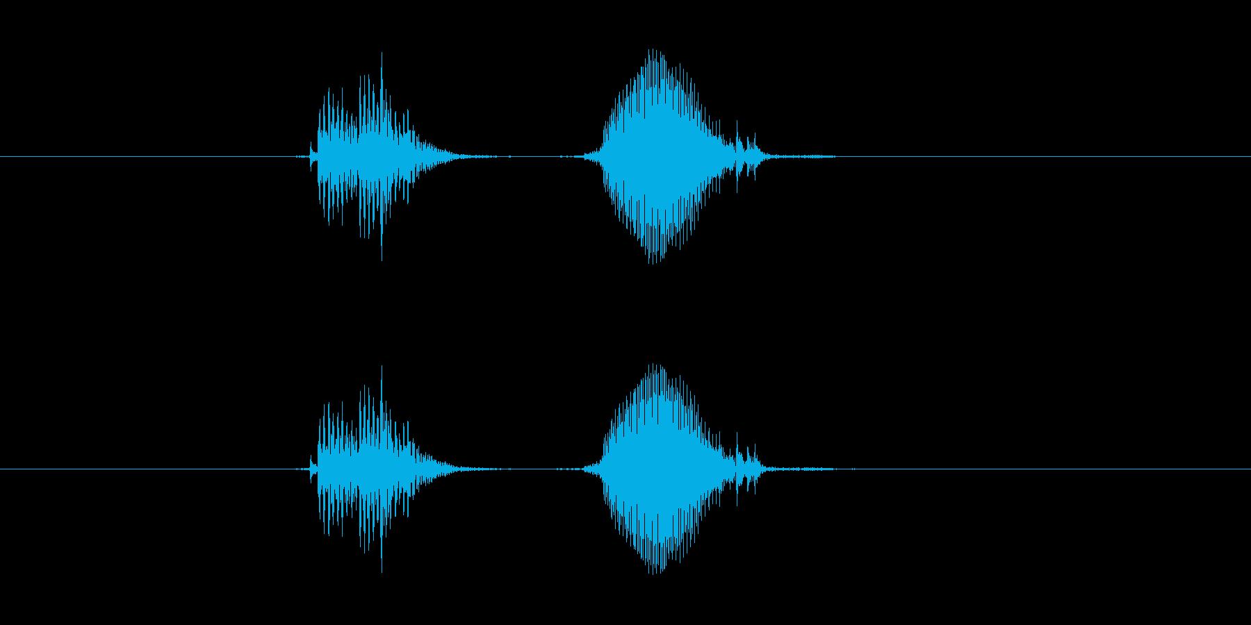 いてっ の再生済みの波形