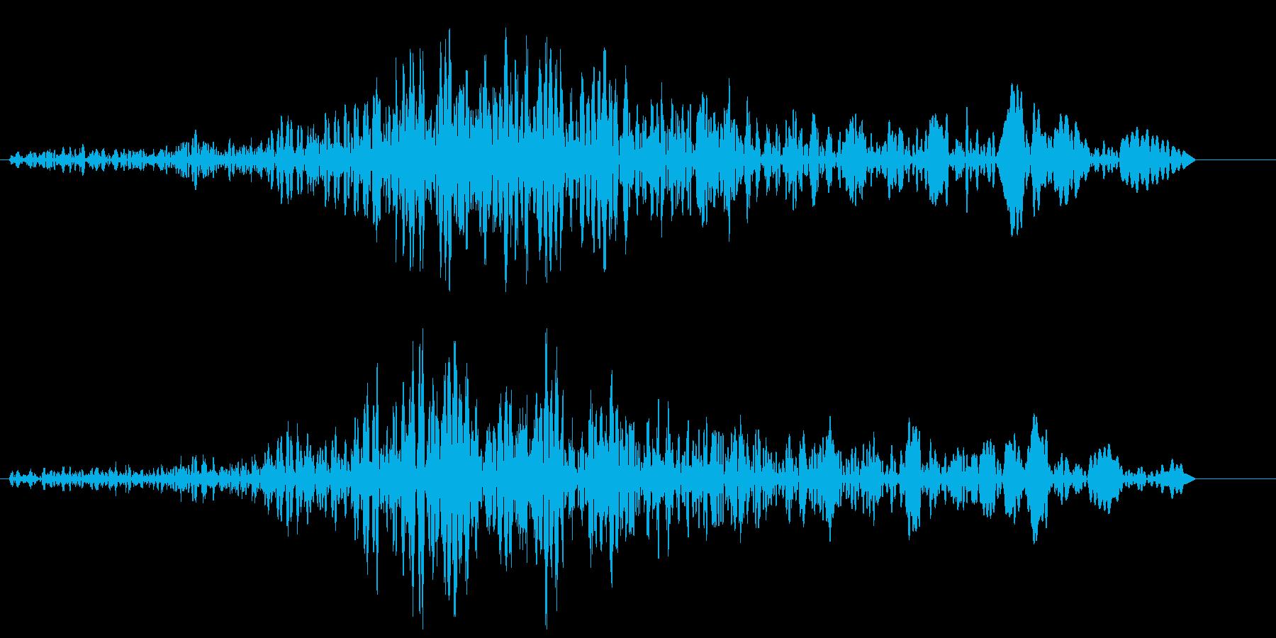 ブォワゥンというハウリング音の再生済みの波形