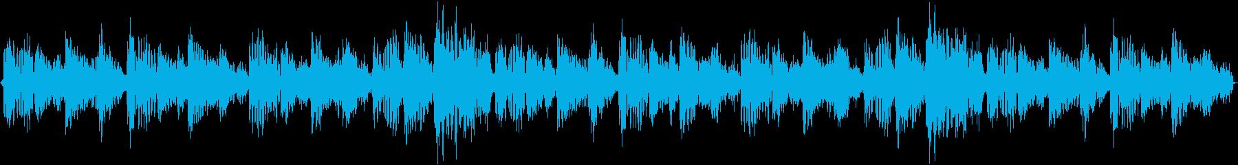 ハウスの神髄の再生済みの波形